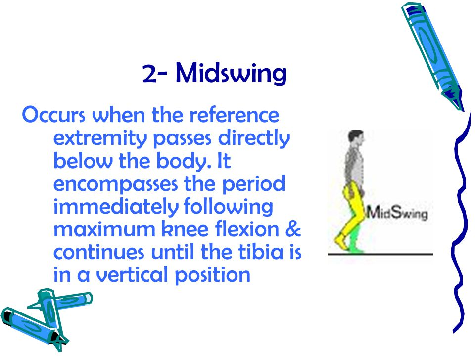 2- Midswing Occurs when the reference extremity passes directly below the body. It encompasses the period immediately following maximum knee flexion &