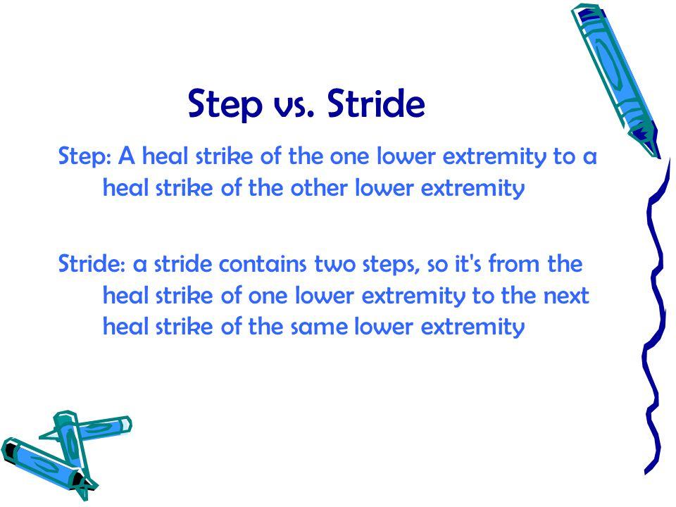 Step vs. Stride Step: A heal strike of the one lower extremity to a heal strike of the other lower extremity Stride: a stride contains two steps, so i