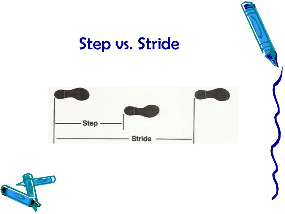 Step vs. Stride