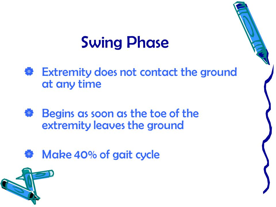 Swing Phase  Extremity does not contact the ground at any time  Begins as soon as the toe of the extremity leaves the ground  Make 40% of gait cycl