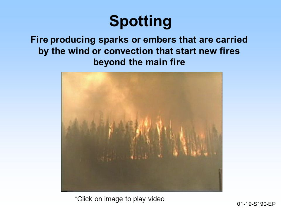 01-19-S190-EP Spotting Fire producing sparks or embers that are carried by the wind or convection that start new fires beyond the main fire *Click on image to play video