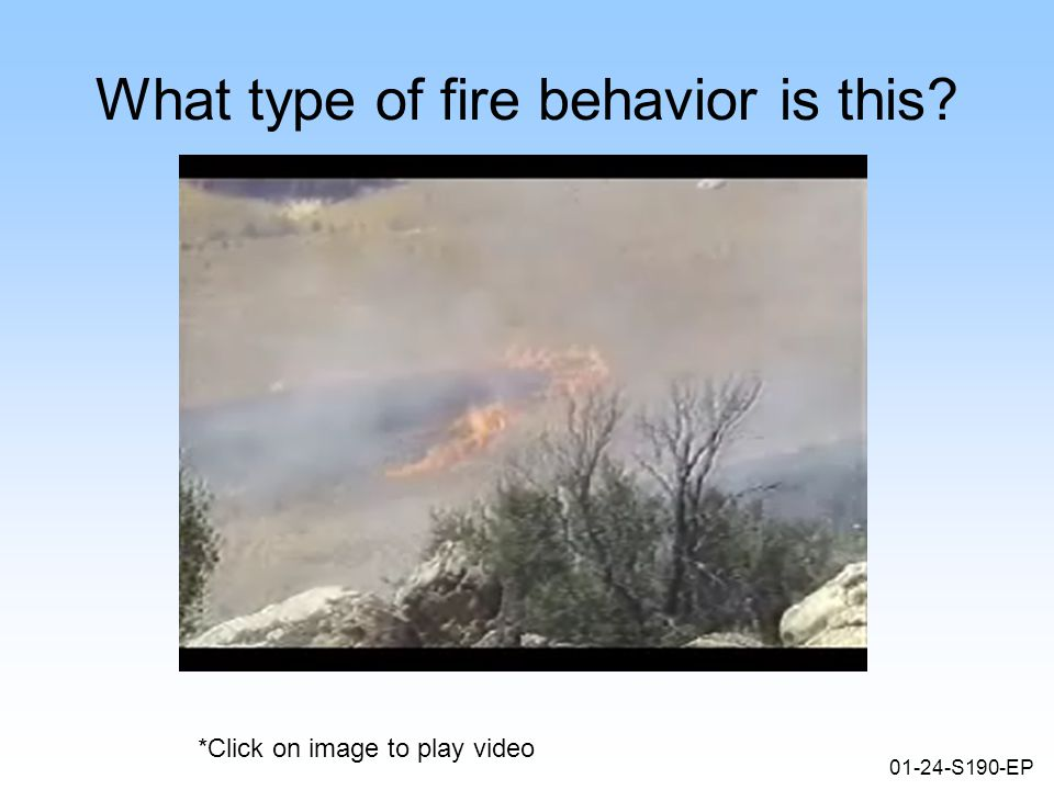 01-24-S190-EP What type of fire behavior is this *Click on image to play video