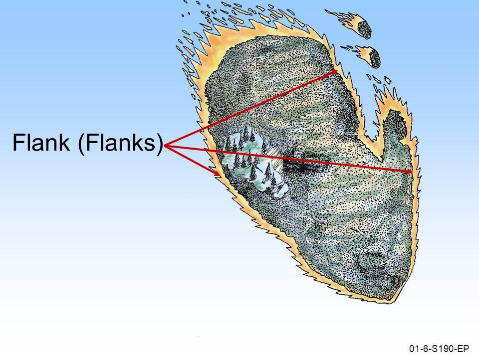 01-6-S190-EP Flank (Flanks)