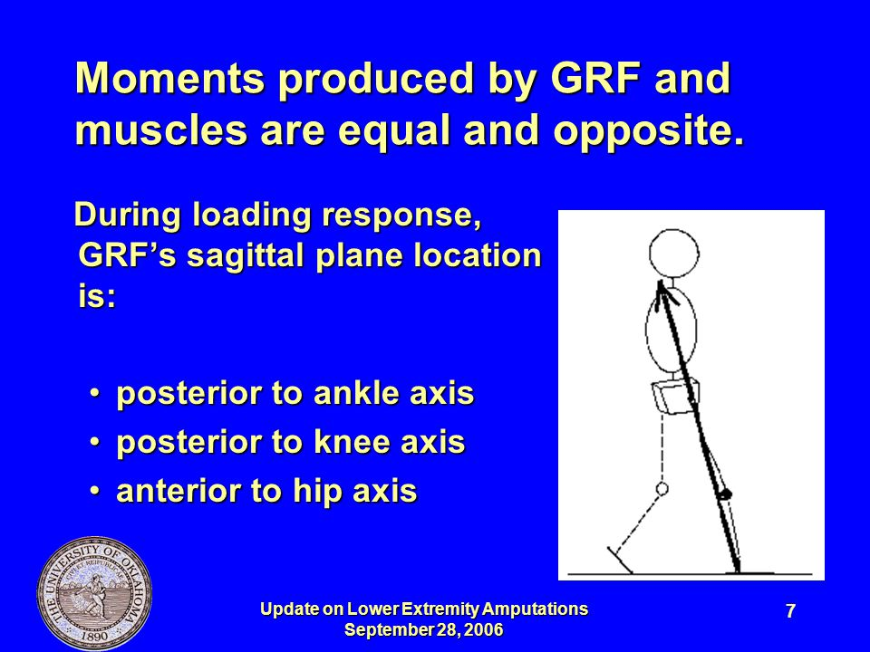Update on Lower Extremity Amputations September 28, 2006 8 To preserve stability, people with amputations can compensate for absent or weak muscles by: 1.