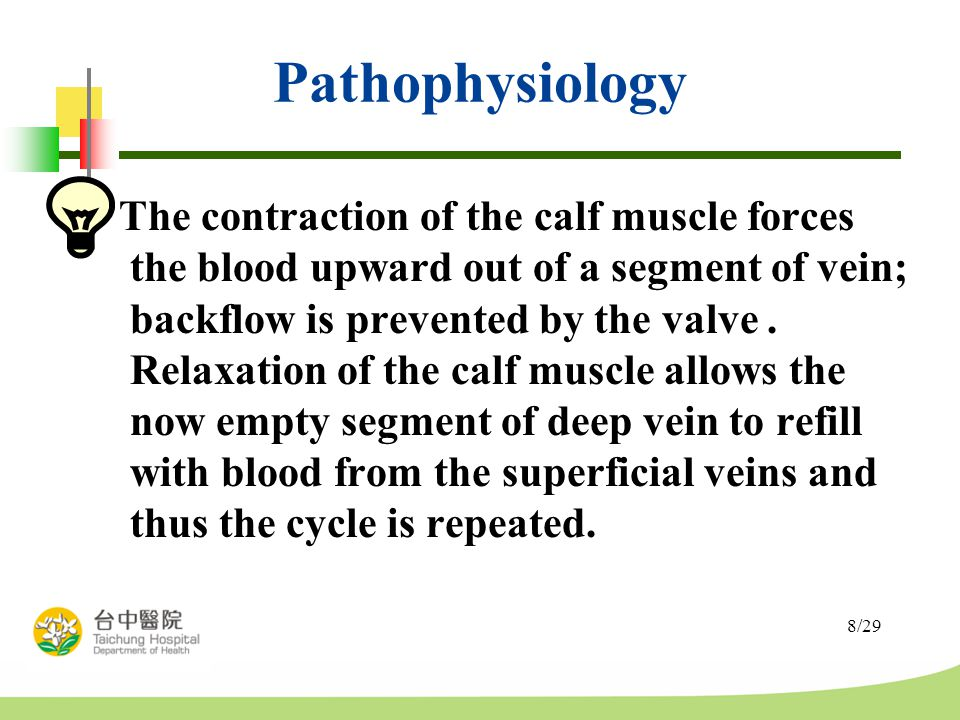 8/29 Pathophysiology The contraction of the calf muscle forces the blood upward out of a segment of vein; backflow is prevented by the valve.