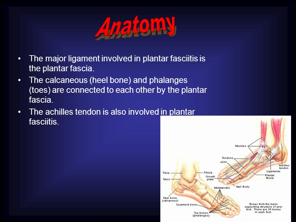 The major ligament involved in plantar fasciitis is the plantar fascia.