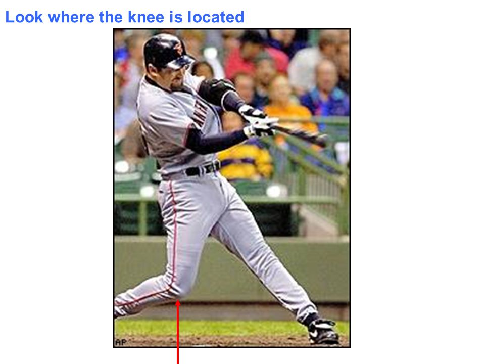Look where the knee is located