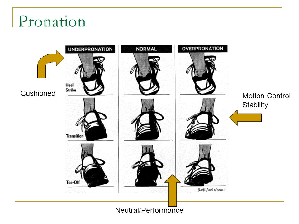 Pronation Cushioned Motion Control Stability Neutral/Performance
