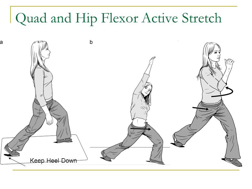 Quad and Hip Flexor Active Stretch Keep Heel Down