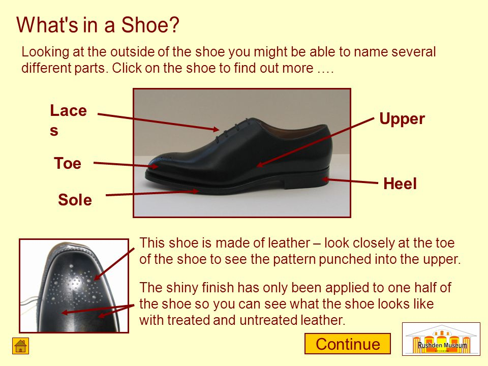 Looking at the outside of the shoe you might be able to name several different parts.