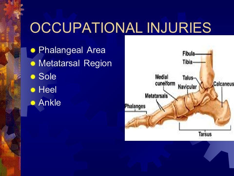 OCCUPATIONAL INJURIES  Phalangeal Area  Metatarsal Region  Sole  Heel  Ankle