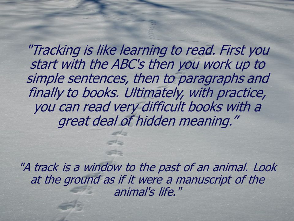 Tracking is like learning to read.