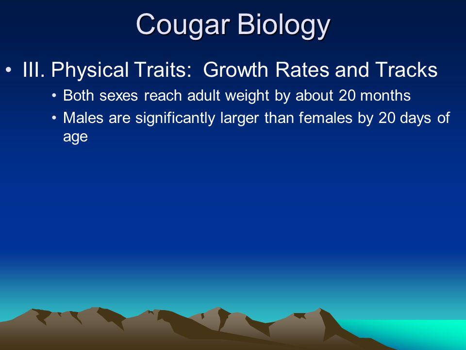 Cougar Biology III.