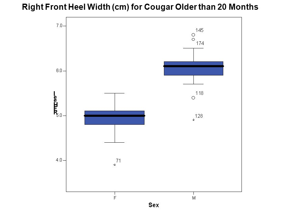 Right Front Heel Width (cm) for Cougar Older than 20 Months