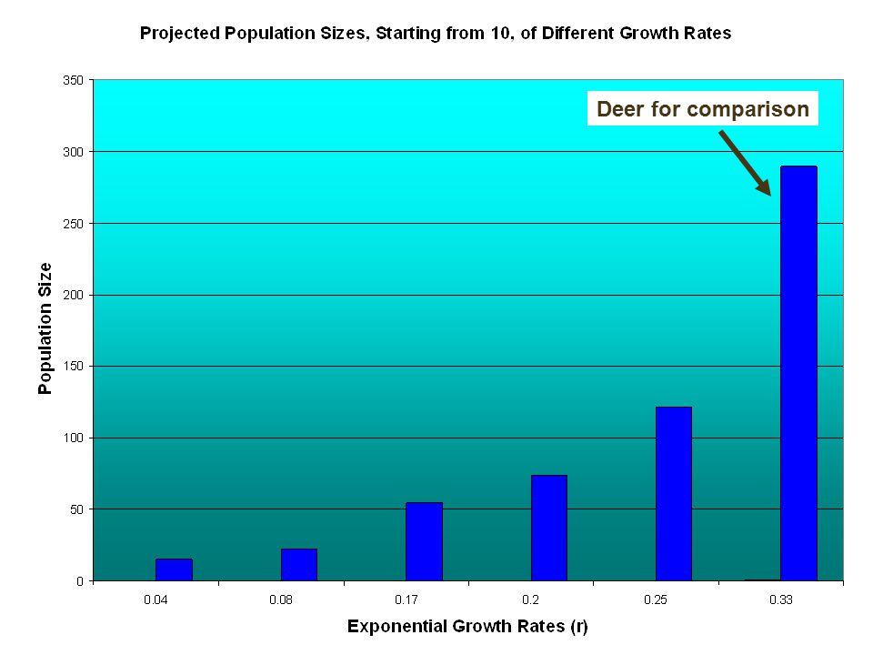 Deer for comparison