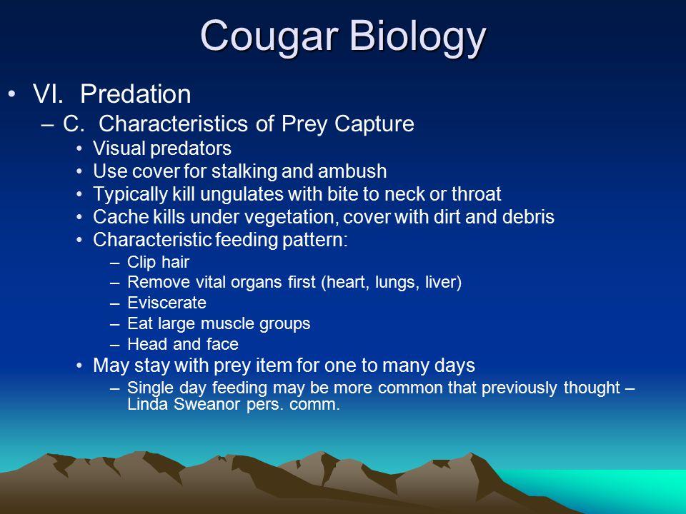 Cougar Biology VI. Predation –C.