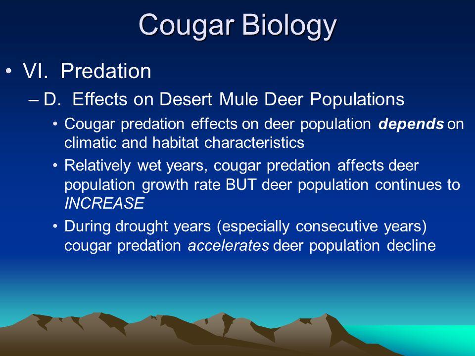 Cougar Biology VI. Predation –D.
