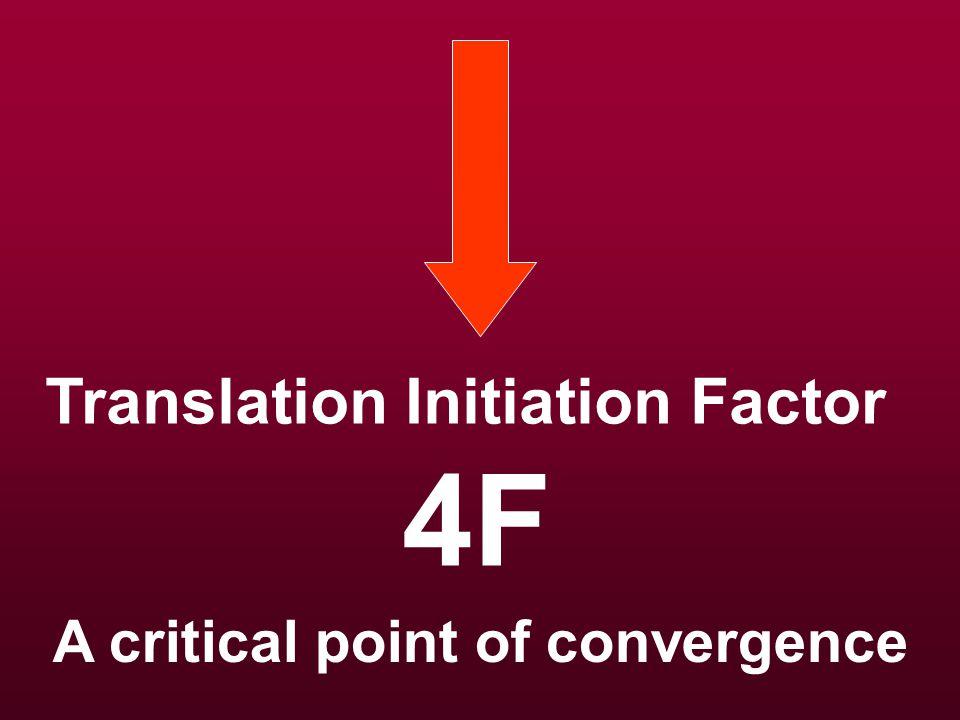 Growth Factor–Growth Factor Receptor 1,2,3…i Adaptor protein 1,2,3…j Signal transducer 1,2,3…k PDGF, TGF, CTGF Ras, tyrosine kinase
