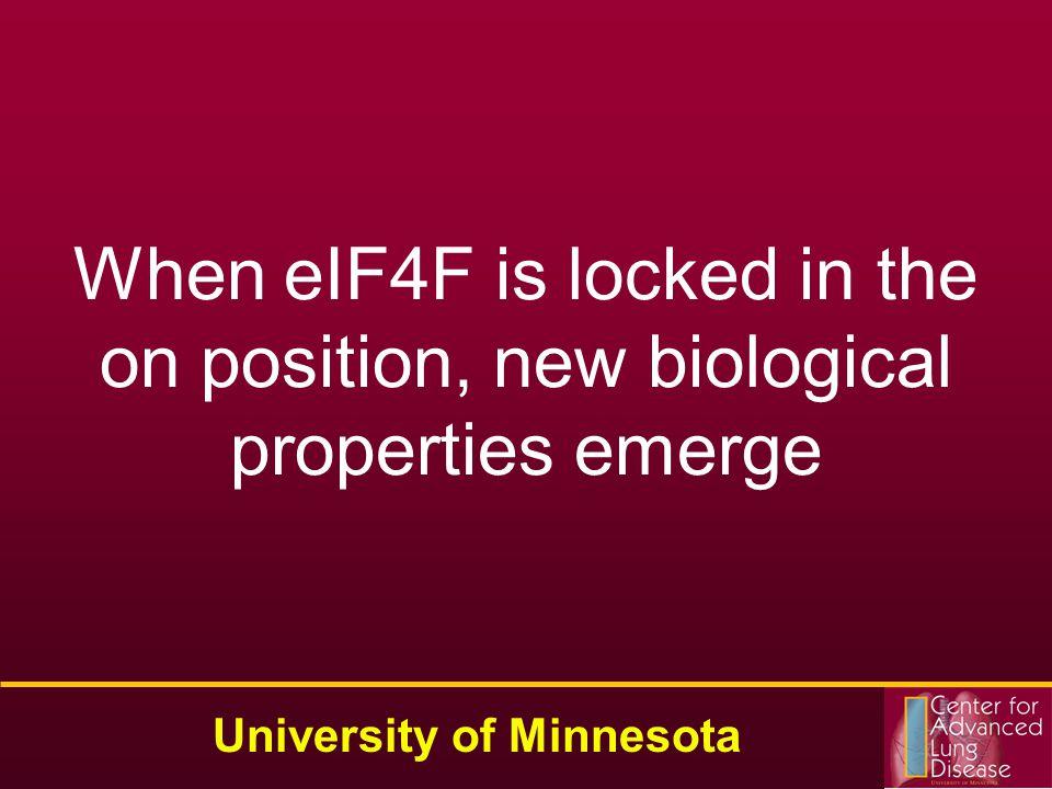 Drug Discovery Identify Molecular Targets an Achilles Heel Validate Molecular Targets University of Minnesota