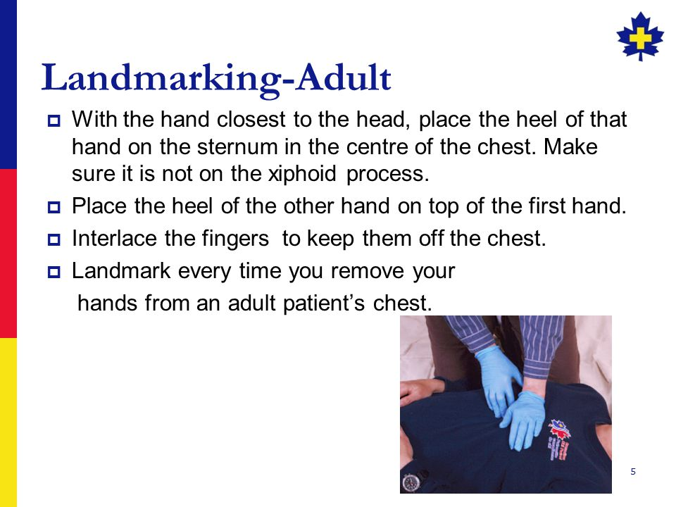 5 Landmarking-Adult  With the hand closest to the head, place the heel of that hand on the sternum in the centre of the chest. Make sure it is not on