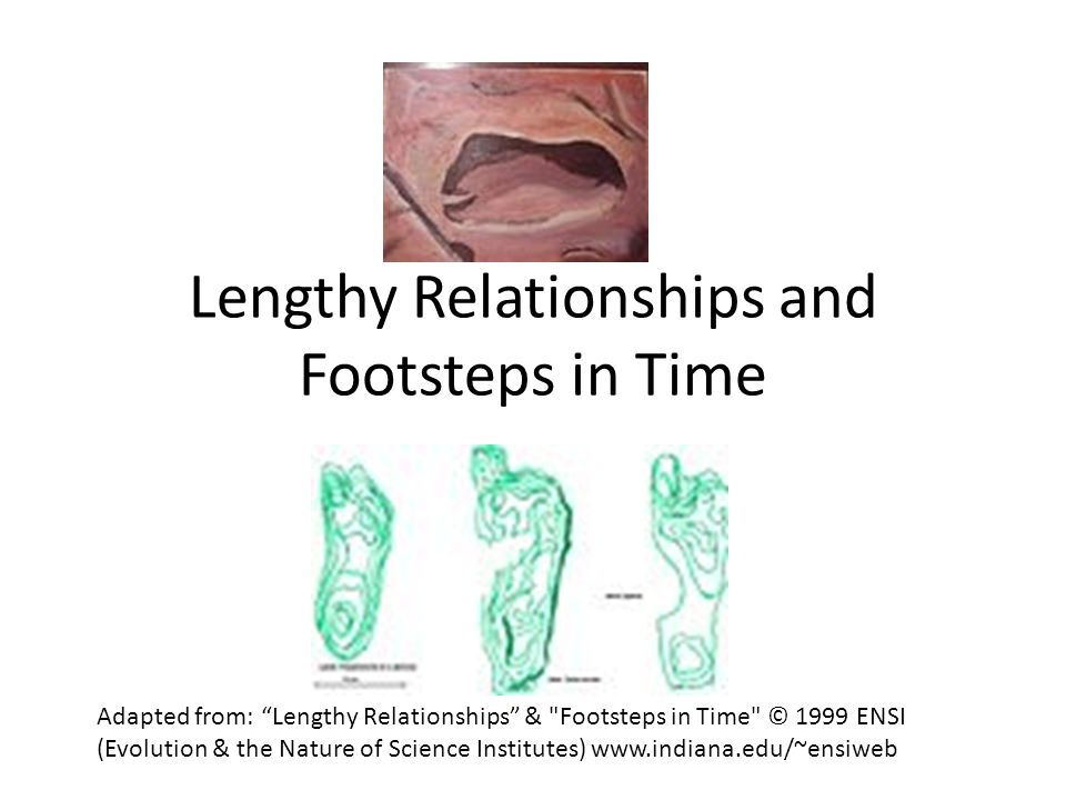 Lengthy Relationships Data from Biology students Leg Length Height Stride Walking Stride Running Foot Size What are the relationships you see in the graphs.