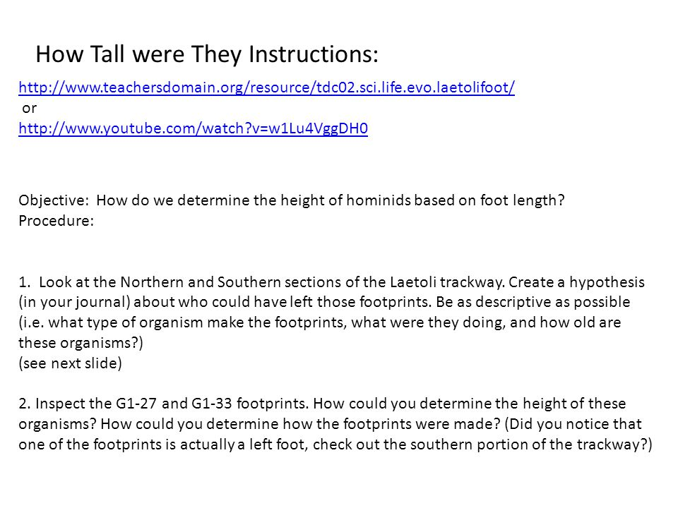 Objective: How do we determine the height of hominids based on foot length.