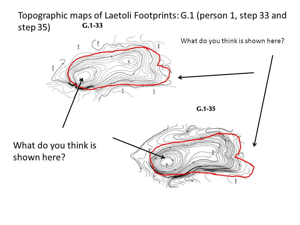 Topographic maps of Laetoli Footprints: G.1 (person 1, step 33 and step 35) What do you think is shown here?