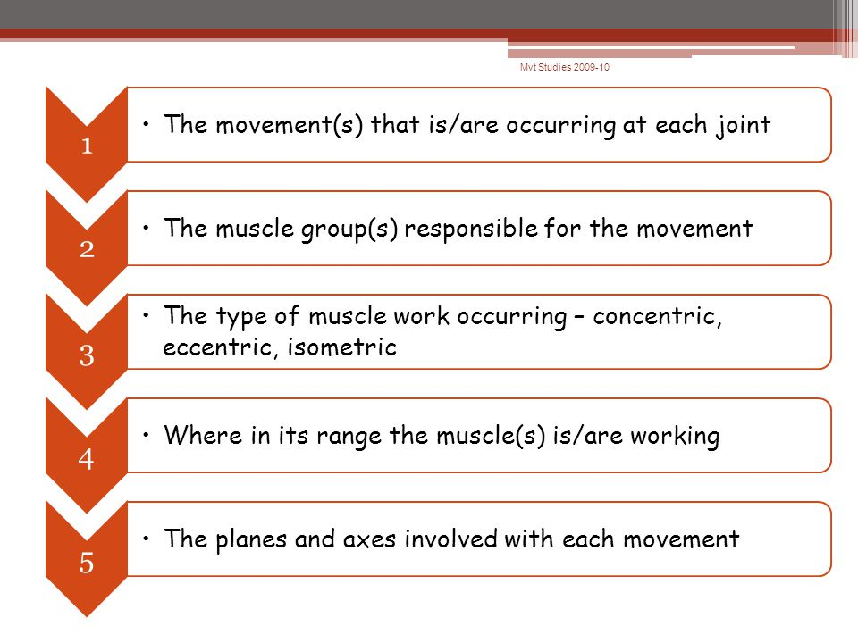 Mvt Studies 2009-10 1 The movement(s) that is/are occurring at each joint 2 The muscle group(s) responsible for the movement 3 The type of muscle work occurring – concentric, eccentric, isometric 4 Where in its range the muscle(s) is/are working 5 The planes and axes involved with each movement