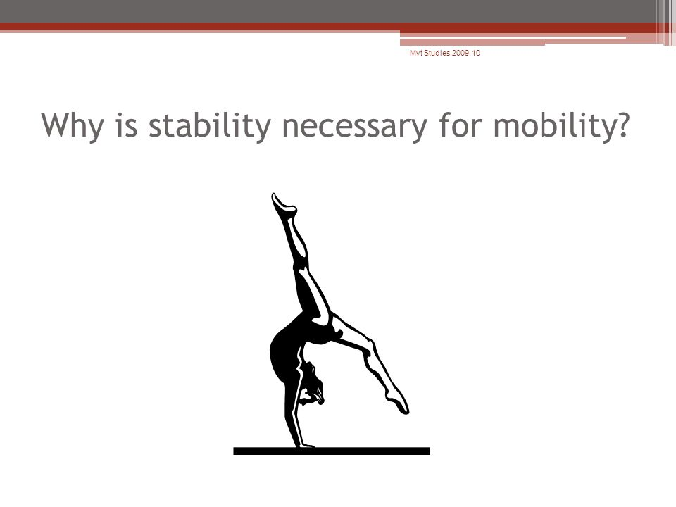 Why is stability necessary for mobility? Mvt Studies 2009-10