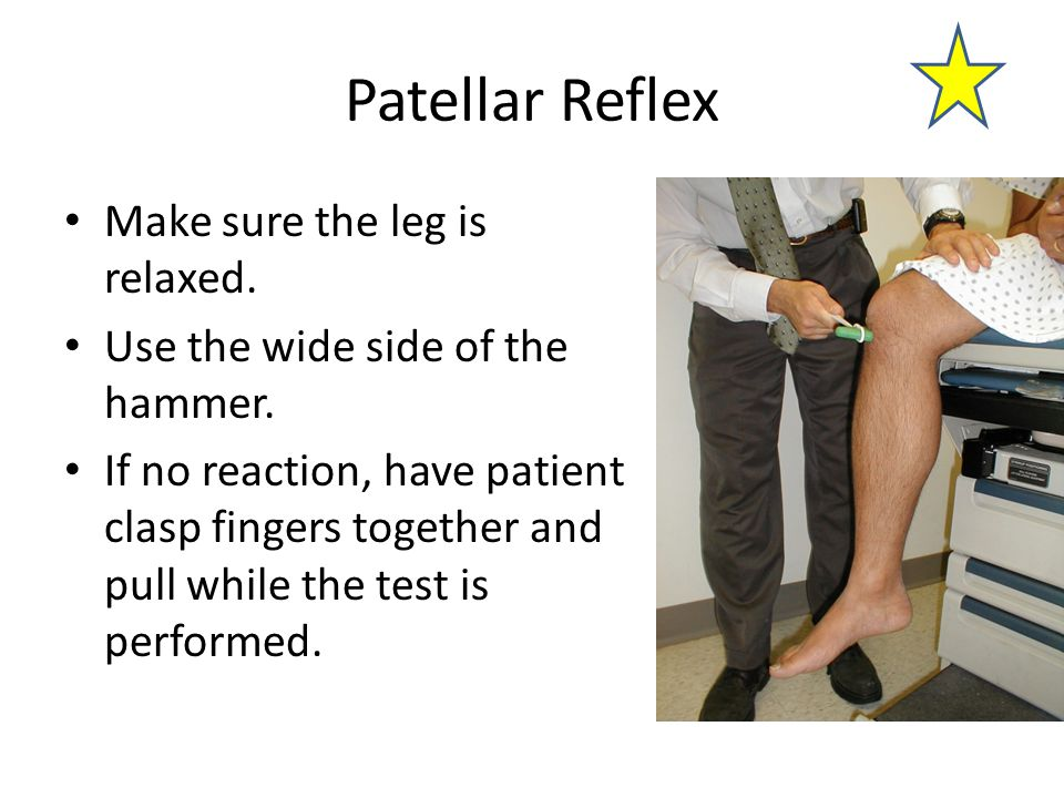 Patellar Reflex Make sure the leg is relaxed. Use the wide side of the hammer. If no reaction, have patient clasp fingers together and pull while the