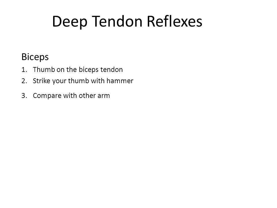 Deep Tendon Reflexes Biceps 1.Thumb on the biceps tendon 2.Strike your thumb with hammer 3.Compare with other arm