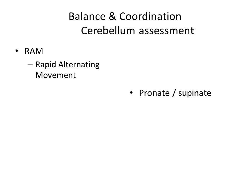 Balance & Coordination Cerebellum assessment RAM – Rapid Alternating Movement Pronate / supinate