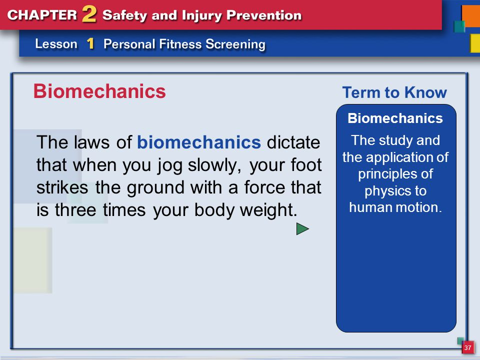 37 Biomechanics The laws of biomechanics dictate that when you jog slowly, your foot strikes the ground with a force that is three times your body weight.