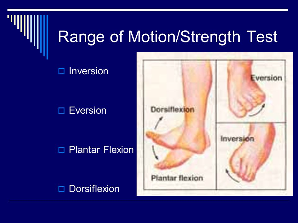 Range of Motion/Strength Test  Inversion  Eversion  Plantar Flexion  Dorsiflexion