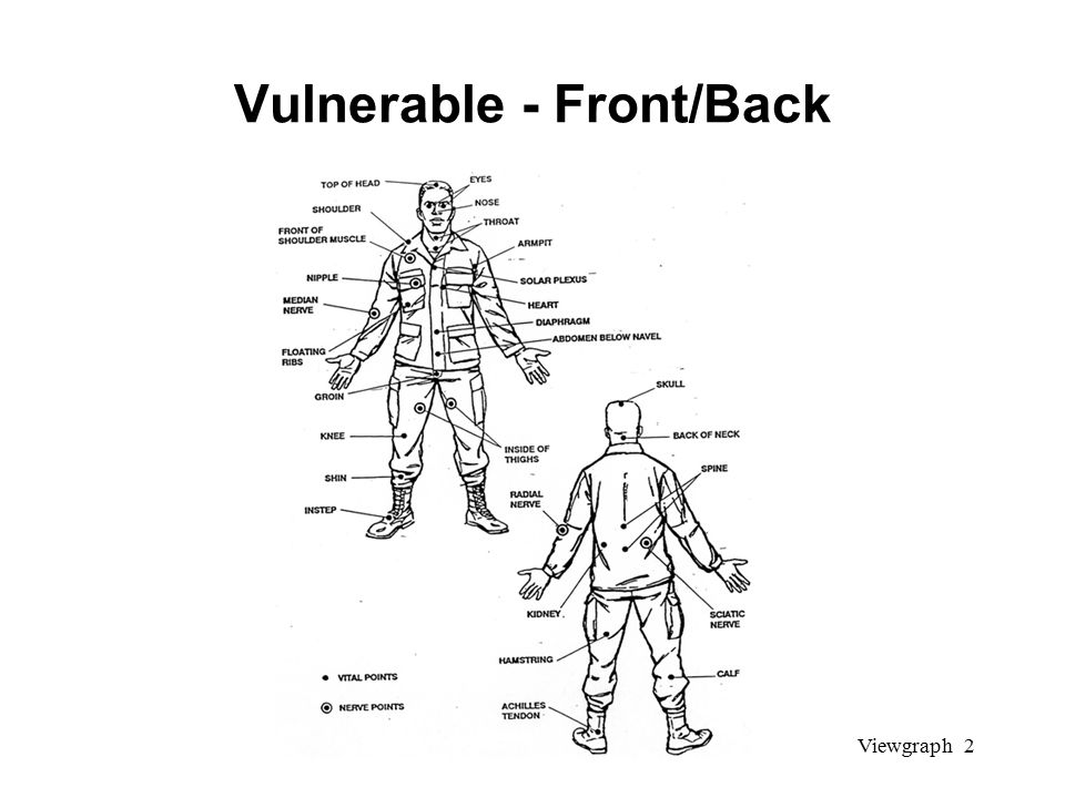 Viewgraph 2 Vulnerable - Front/Back