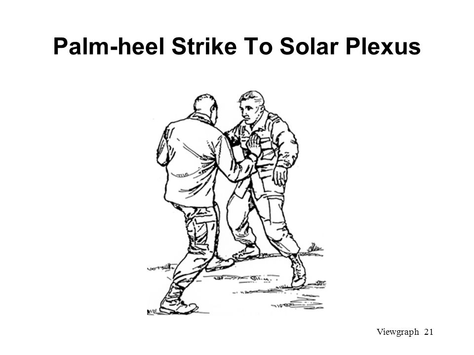 Viewgraph 21 Palm-heel Strike To Solar Plexus