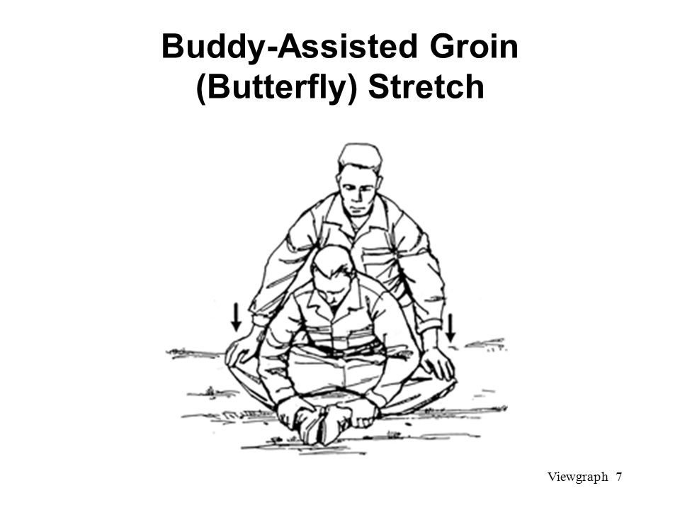 Viewgraph 7 Buddy-Assisted Groin (Butterfly) Stretch