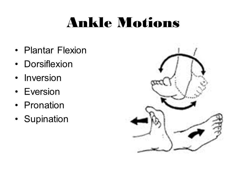 Ankle Motions Plantar Flexion Dorsiflexion Inversion Eversion Pronation Supination