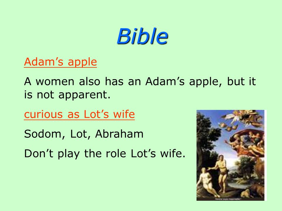 Bible Adam's apple A women also has an Adam's apple, but it is not apparent.