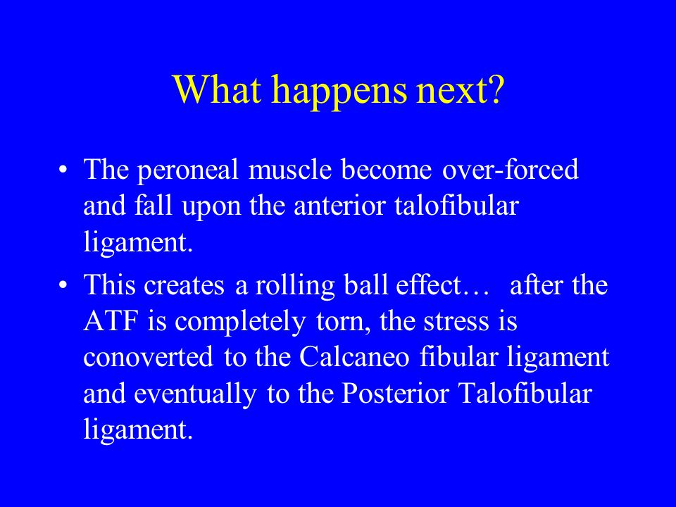 What happens next? The peroneal muscle become over-forced and fall upon the anterior talofibular ligament. This creates a rolling ball effect… after t