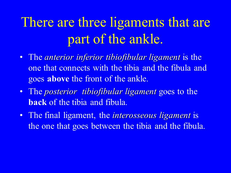 The stages of rehabilitation Acute StageAcute Stage (1-3 days)- Use PRICE, ankle can not support any weight.