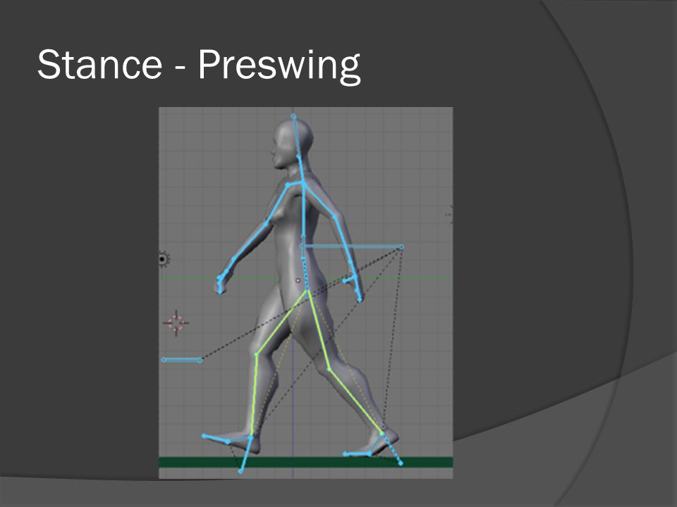 Stance - Preswing