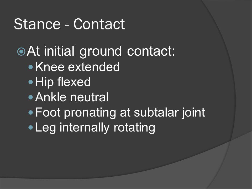 Abnormal Gait  Gluteus medius gait pattern Characterized by Trendelenberg gait pattern Stance - opposite side of pelvis tilts downward during toward weaker side resulting from a weakened medius