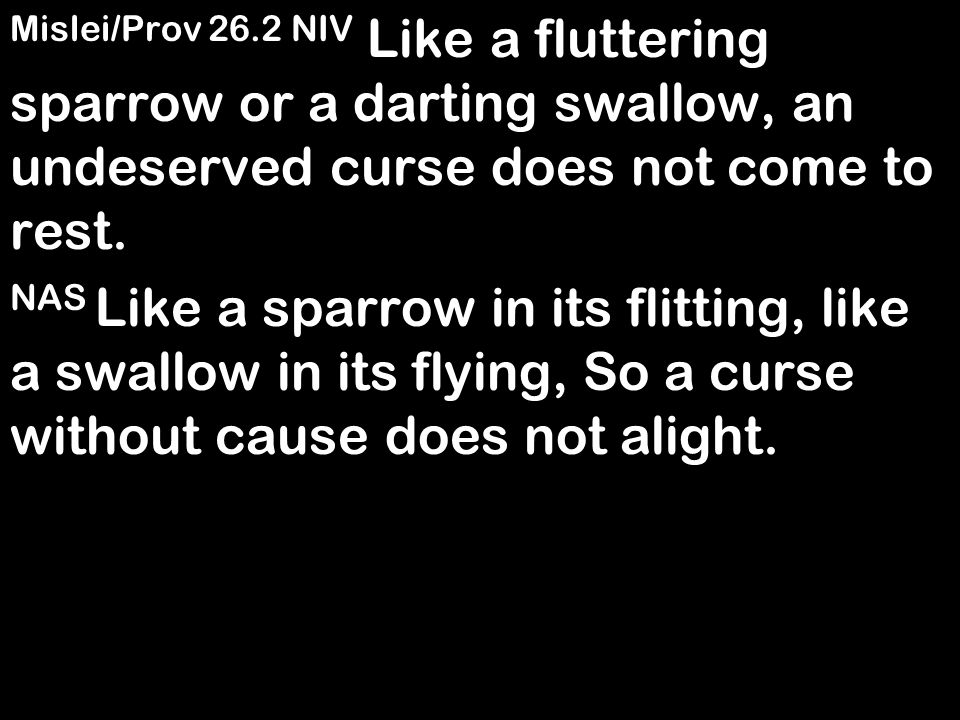 Mislei/Prov 26.2 NIV Like a fluttering sparrow or a darting swallow, an undeserved curse does not come to rest. NAS Like a sparrow in its flitting, li