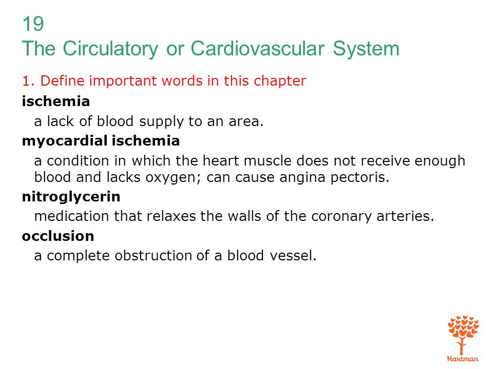 19 The Circulatory or Cardiovascular System 1. Define important words in this chapter ischemia a lack of blood supply to an area. myocardial ischemia
