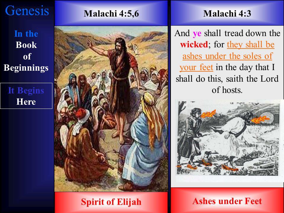 It Begins Here In the Garden of Eden In the Book of BeginningsGenesisGenesis It Begins Here In the Garden of Eden Garden of Eden aprons And the eyes o