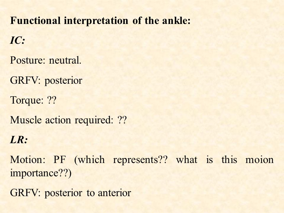 Functional interpretation of the ankle: IC: Posture: neutral.