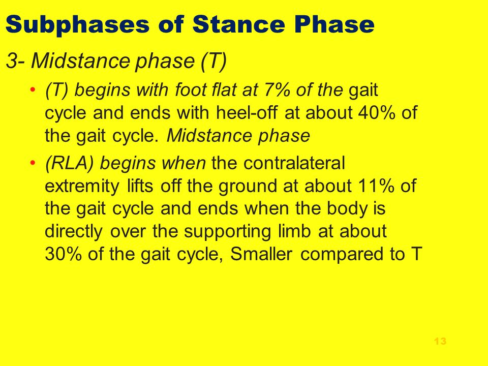 3- Midstance phase (T) (T) begins with foot flat at 7% of the gait cycle and ends with heel-off at about 40% of the gait cycle. Midstance phase (RLA)