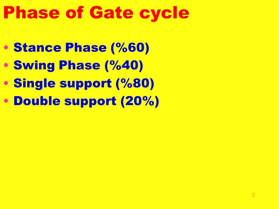 3- Midstance phase (T) (T) begins with foot flat at 7% of the gait cycle and ends with heel-off at about 40% of the gait cycle.
