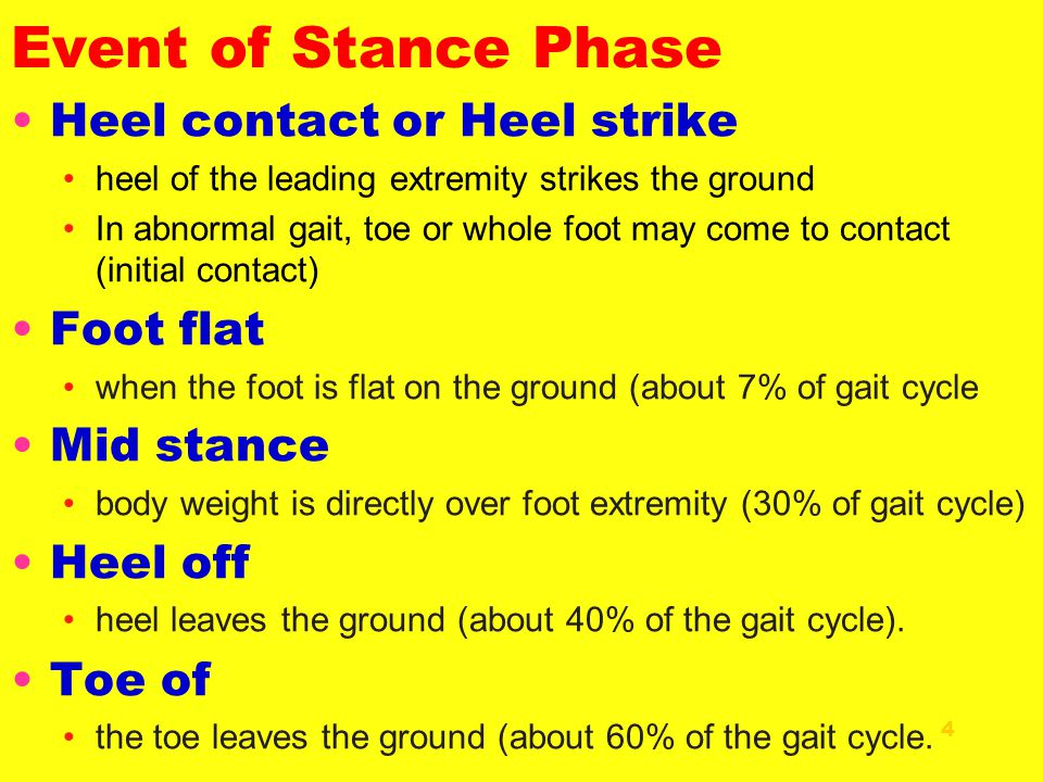 Event of Stance Phase 4 Heel contact or Heel strike heel of the leading extremity strikes the ground In abnormal gait, toe or whole foot may come to c